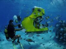 bora bora hoteles submarinismo